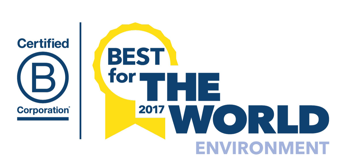 bcorp best for the world environment
