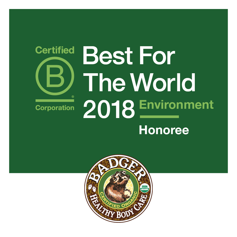bcorp best for the world environment 2018