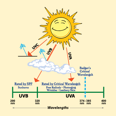 Critical Wavelength Ultraviolet Wavelength Sunscreens